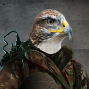 Phantom Hawk