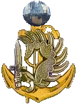 1st Legionnaire Division