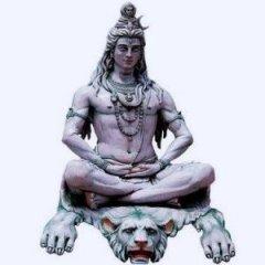 Shiva1337