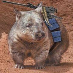 a_killer_wombat