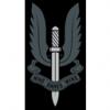S Squadron